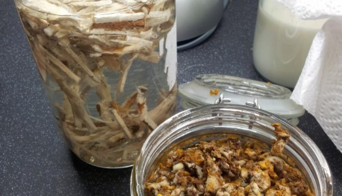 How to make Marshmallow root and Mullein flower syrup